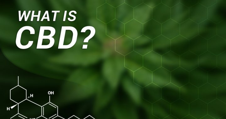 CBD for Arthritis Pain: What You Need To Know