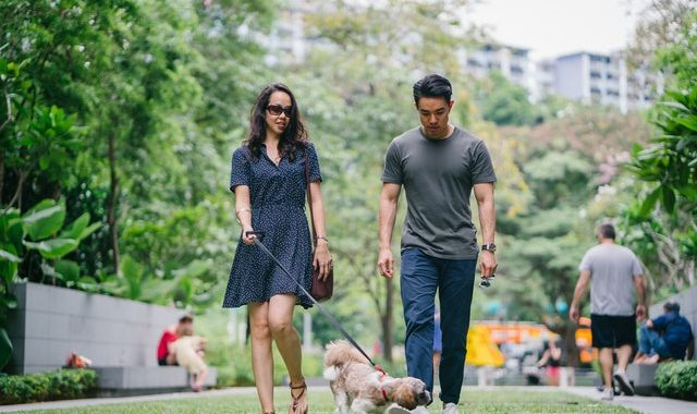 5 Benefits of Walking Your Dog Daily